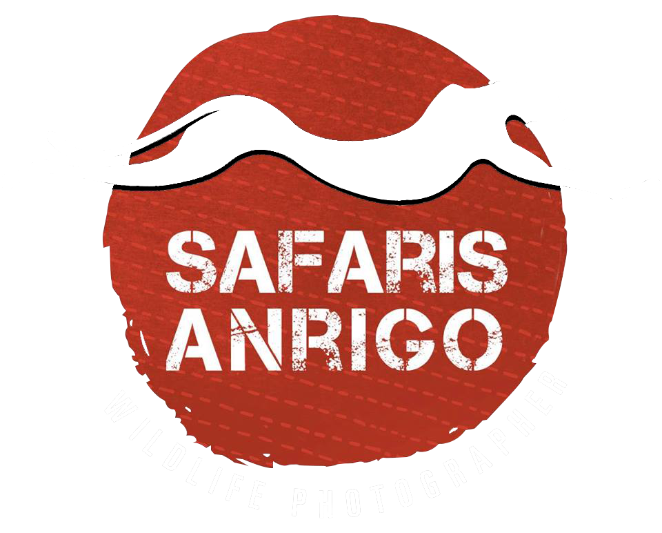 Safaris Anrigo